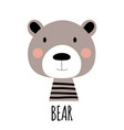 cute little bear animal icon vector image vector image