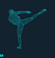 fighter sports concept 3d model of man human body vector image vector image