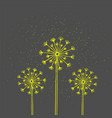 handrawn white silhouette three dandelion on a vector image