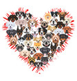 a heart for dogs vector image vector image