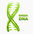 abstract dna strand as green grass vector image