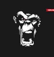 angry ape vector image