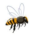 bee 001 vector image vector image