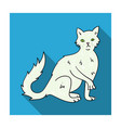 british semi-longhair icon in flat style isolated vector image vector image