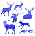 DeerWatercolor vector image vector image