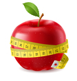 Red apple and measure tape vector image vector image