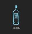 vodka bottle hand drawn vector image