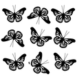 pattern with big black butterflies vector image
