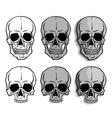 Set of Skulls vector image