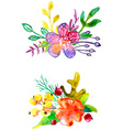 Watercolor flower compositions vector image
