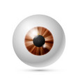 azure brown eye ball vector image