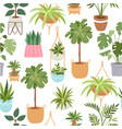 home green potted plants seamless pattern vector image vector image