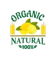 Natural organic lemon fruit poster vector image vector image