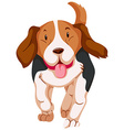 Cute dog running on white background vector image vector image