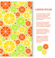 flat poster or banner template with citrus fruits vector image vector image