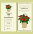 Hibiscus flower in pot banners vector image