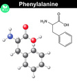 Phenylalanine essential amino acid vector image vector image