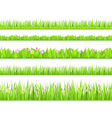 seamless grass vector image vector image