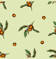 seamless pattern with hand drawn colored solanum vector image vector image
