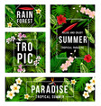 summer tropical paradise poster with palm leaf vector image vector image