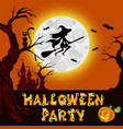 halloween of mysterious night vector image