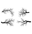 bare branch winter set design isolated on white vector image vector image