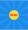 big sale poster banner special offer vector image vector image