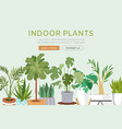 indoor plants web template vector image