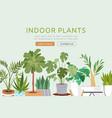 indoor plants web template vector image vector image