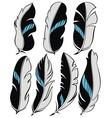 Set of beautiful stylish feathers vector image