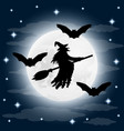 silhouette a terrible witch on a broomstick vector image vector image