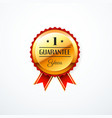 1 year guarantee gold label vector image vector image
