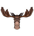 colorful a moose head with antlers vector image vector image