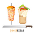 doner kebab promo poster with meet on skewer and vector image