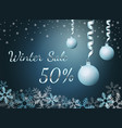 elegant silver winter lettering design winter sale vector image vector image