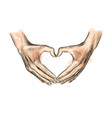 hands in shape heart from a splash of vector image vector image