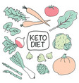 healthy keto food on white vector image