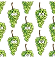 Seamless pattern of bunches of green grapes vector image vector image