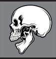 skull black 02 vector image vector image