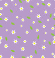 Seamless flower pattern camomile vector image