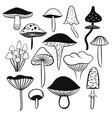 black and white mushrooms vector image vector image