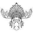 engraved contour a moose head with vector image vector image