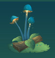 fantasy mushrooms with light leaves and grass vector image