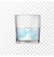 glass with alcohol or water and two ice cubes vector image