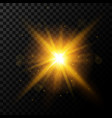 light burst golden light with sparkles vector image