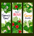 summer time banners with tropical leaves vector image