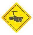 surveillance cameras vector image vector image