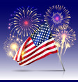 usa independence day poster with firework and flag vector image vector image