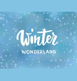 winter wonderland text hand drawn brush lettering vector image vector image