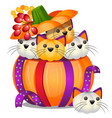diy pumpkin in the form of small kittens isolated vector image